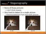 steganography2