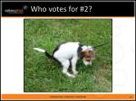 who votes for 2