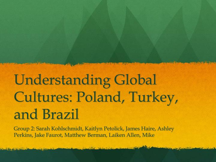 understanding global cultures poland turkey and brazil n.