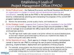 establishing 3 levels of project management offices pmos
