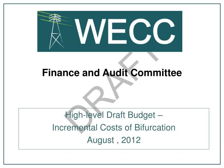 finance and audit committee n.