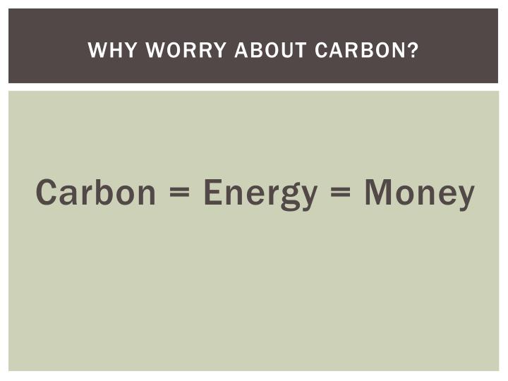 Why worry about carbon?