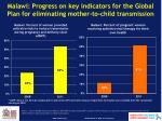 malawi progress on key indicators for the global plan for eliminating mother to child transmission