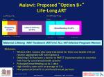 malawi proposed option b life long art