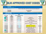 blm approved cost codes