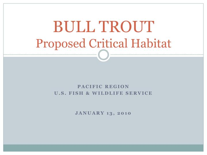 bull trout proposed critical habitat n.