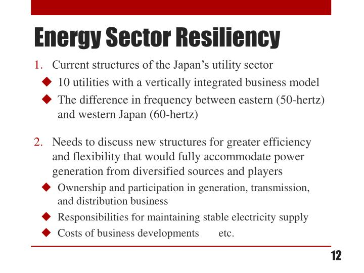 Current structures of the Japan's utility sector