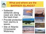 what and where are the barrier islands1