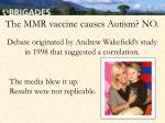 the mmr vaccine causes autism no