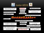 junior aecg4