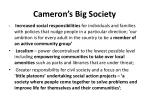 cameron s big society
