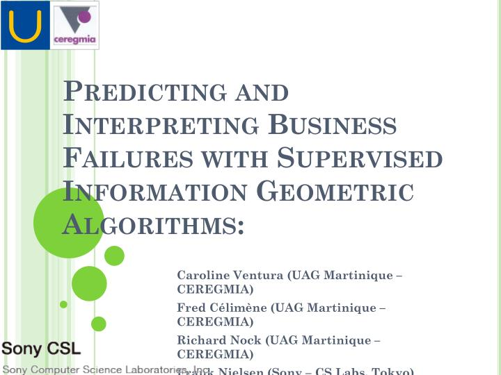 predicting and interpreting business failures with supervised information geometric algorithms n.