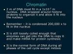 chromatin1