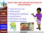 what are the disadvantages of franchisse