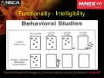 functionality intelligibility