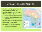 african language families