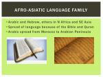 afro asiatic language family