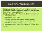 indo european branches