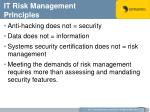 it risk management principles