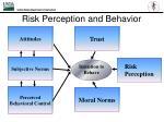 risk perception and behavior1