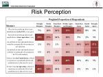 risk perception2