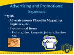 advertising and promotional expenses