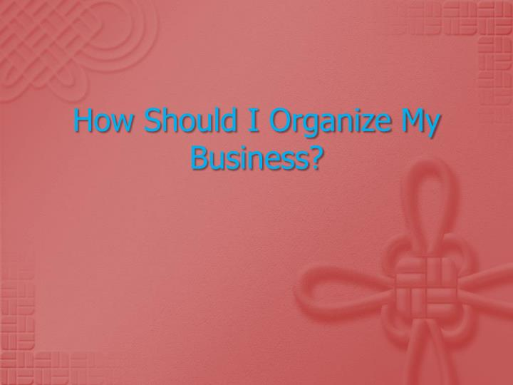 how should i organize my business n.