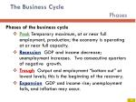 the business cycle phases