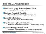 the msg advantages