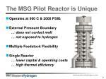 the msg pilot reactor is unique