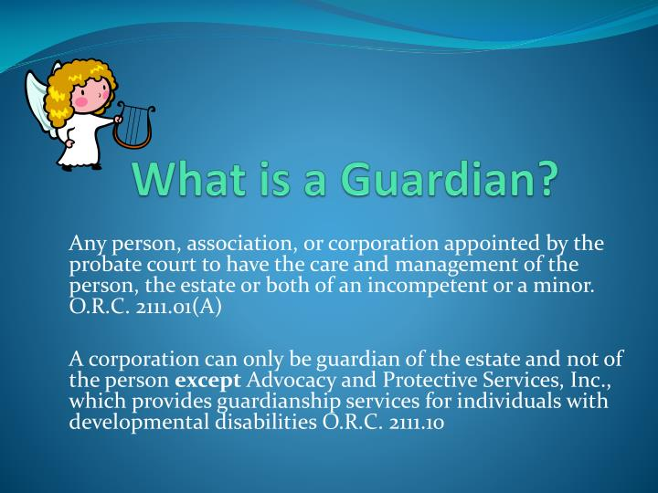 What is a Guardian?