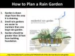 how to plan a rain garden
