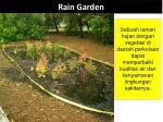rain garden3
