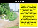 rain garden4