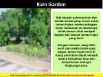 rain garden5