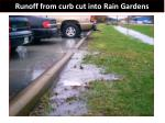 runoff from curb cut into rain gardens