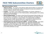 face twg subcommittee charters2