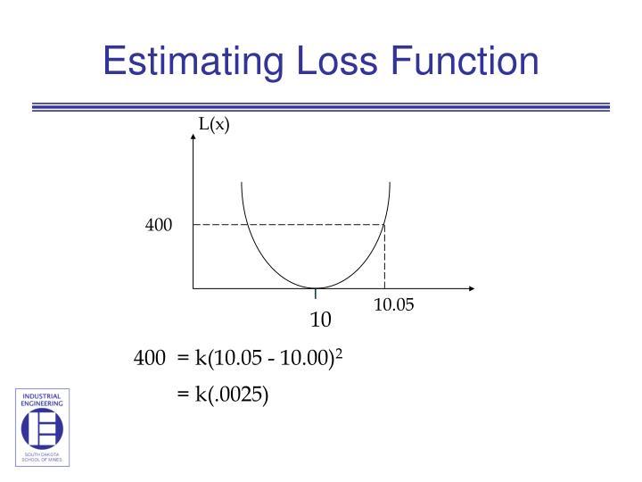 Estimating Loss Function