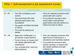 pillar 1 self assessment job assessment scores