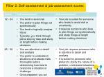 pillar 2 self assessment job assessment scores