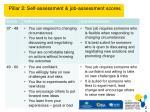 pillar 2 self assessment job assessment scores1