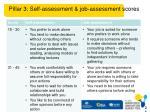 pillar 3 self assessment job assessment scores