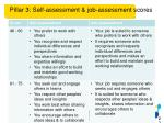 pillar 3 self assessment job assessment scores1