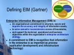 defining eim gartner