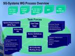 sg systems wg process overview