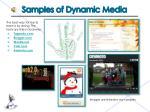 samples of dynamic media
