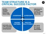 team structure is a critical success factor