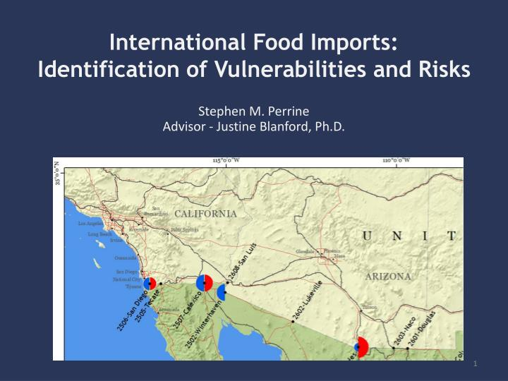 international food imports identification of vulnerabilities and risks n.