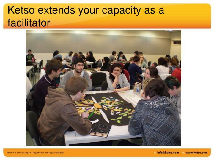 Ketso extends your capacity as a facilitator