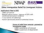 other immigration relief for immigrant victims